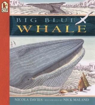 Big Blue Whale: Lee y maravilla