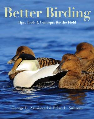 Mejor Birding: Consejos, herramientas y conceptos para el campo