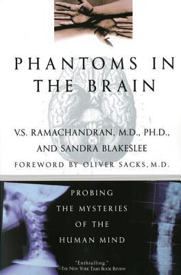 Fantasmas en el Cerebro: Explorando los Misterios de la Mente Humana