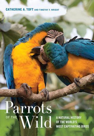 Los loros del salvaje: una historia natural de las aves más captivantes del mundo