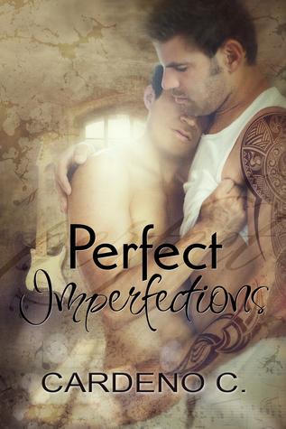 Las imperfecciones perfectas