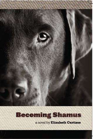 Convertirse en Shamus