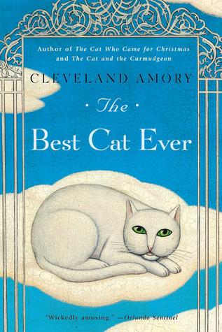 El mejor gato nunca