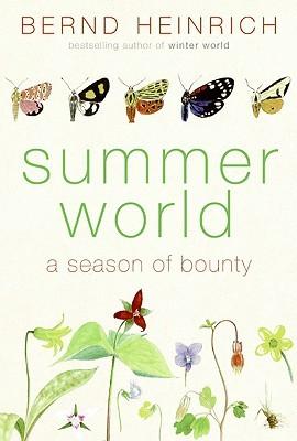 Mundial de Verano: Una estación de Bounty