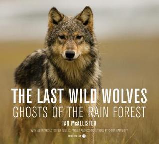 Los últimos lobos salvajes: los fantasmas de la selva tropical