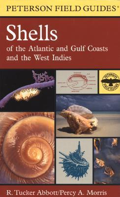 Una guía de campo para las conchas: costas del Atlántico y del Golfo y las Indias Occidentales