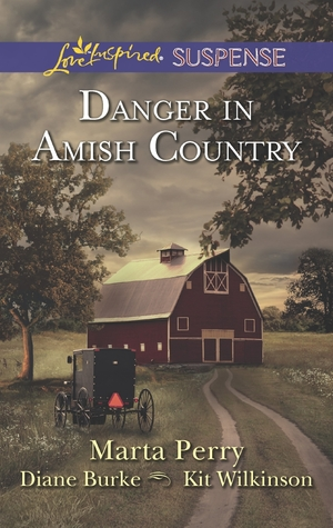 Danger in Amish País: Fall from Grace  Regreso peligroso a Willow Trace