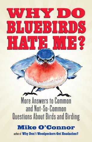 ¿Por qué los Bluebirds me odian ?: Más respuestas a preguntas comunes y no tan comunes sobre aves y observación de aves