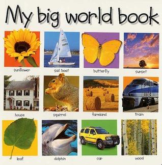Mi Libro del Mundo Grande