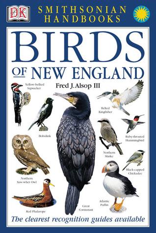 Aves de Nueva Inglaterra