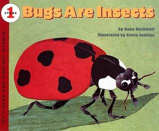 Los insectos son insectos