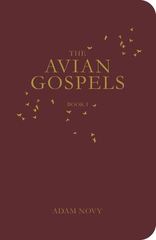 Los Evangelios Avian, Libro I