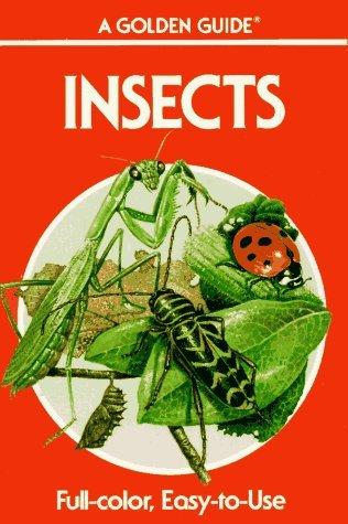 Insectos: Una Guía para los Insectos Americanos Familiares